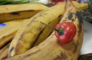Plantain and the Fierce Scotch Bonnet